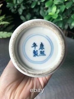 A Fine Chinese Late Qing Blue & White Vase with Floral & Bird Pattern 27cm tall